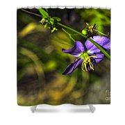Louisiana Wildflower Shower Curtain