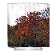 Love For Life Shower Curtain