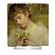 Love In A Mist Shower Curtain by Sophie Anderson