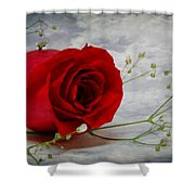 Love Is Everlasting Shower Curtain