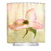 Love Letter Vi Shower Curtain