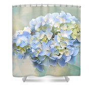 Love Letter Vii Hydrangea Shower Curtain by Jai Johnson