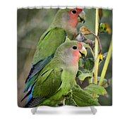 Lovebird Couple  Shower Curtain