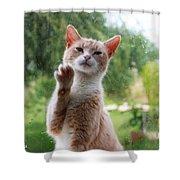 Lovely Cat Shower Curtain