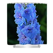 Lovely Larkspur Blue Shower Curtain