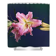 Lovely Pink Lilies Shower Curtain