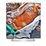 Loven It Shower Curtain