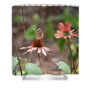 Lover Of Coneflowers Shower Curtain