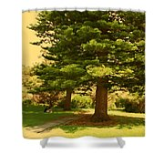Lovers In Spring Shower Curtain