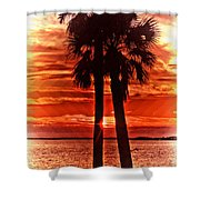 Loving Palms-the Journey Shower Curtain