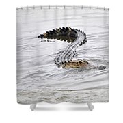 Low Country Marsh Alligator Shower Curtain