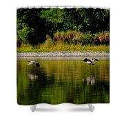Low Gliders Shower Curtain