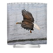 Low Pass Shower Curtain