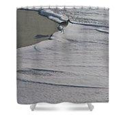 Lowdermilk Shower Curtain