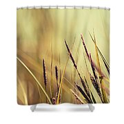 Luminis -s02b - Yellow Shower Curtain