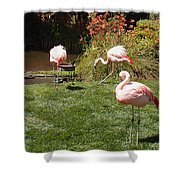 Lunch Meeting Shower Curtain