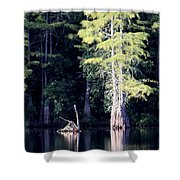 Lunker Lake Shower Curtain