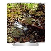 Lupin Creek, Strathcona Provincial Shower Curtain