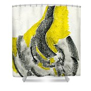 Lyrical Maze Shower Curtain
