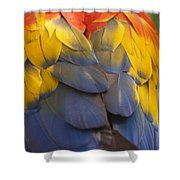 Macaw Parrot Plumes Shower Curtain