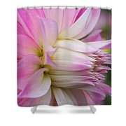 Macro Flower Profile Shower Curtain