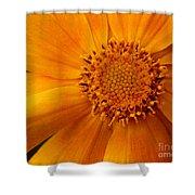 Macro Flower Shower Curtain