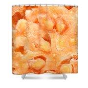 Macro Of Guava Fruit Shower Curtain