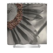 Macro Sunflower In Partial Color Shower Curtain