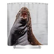 Mad As Hell Shower Curtain