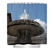 Maderno's Fountain Shower Curtain