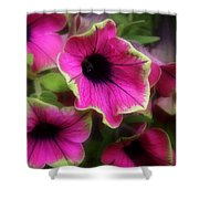Magenta Petunia Shower Curtain