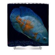 Magic Fish Name Oscar  Shower Curtain