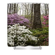 Magical Azaleas At Callaway Botanical Gardens Shower Curtain