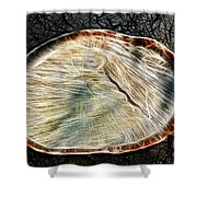Magical Tree Stump Shower Curtain by Mariola Bitner