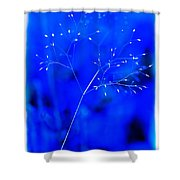 Magical Weed Shower Curtain