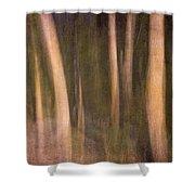 Magical Wood Shower Curtain