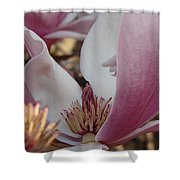 Magnolia Shower Curtain