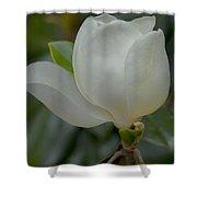 Magnolia Opening Shower Curtain