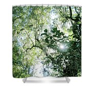 Magnolia Plantation Sc Shower Curtain