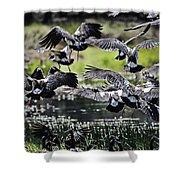 Magpie Geese In Flight Mcminn Lagoon Shower Curtain