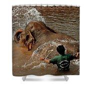 Bathing An Elephant Laos Shower Curtain