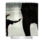 Mahut With Elephant Shower Curtain