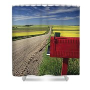 Mailbox On Country Road, Tiger Hills Shower Curtain