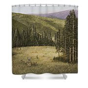 Majesty In The Rockies Shower Curtain