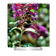 Making Things New Via The Bee Series Shower Curtain
