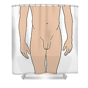 Male, Full Anterior View Shower Curtain