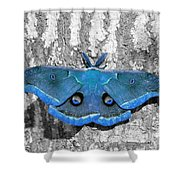 Male Moth Light Blue Shower Curtain