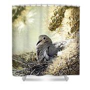 Mama Dove Shower Curtain