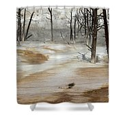 Mammoth Terrace Runoff Shower Curtain