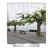 Man With Dog Walking On Empty Promenade With Trees Shower Curtain